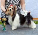 INTERNATIONAL DOG SHOW CACIB-FCI